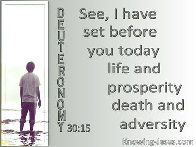 Deuteronomy 30:15 Life And Prosperity Or Death And Adversity (gray)